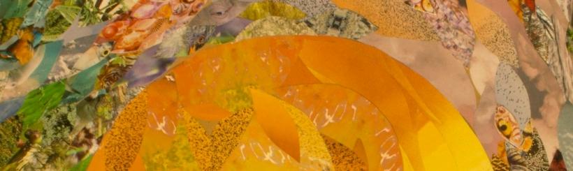 sun-collage-e1543508510867.jpg